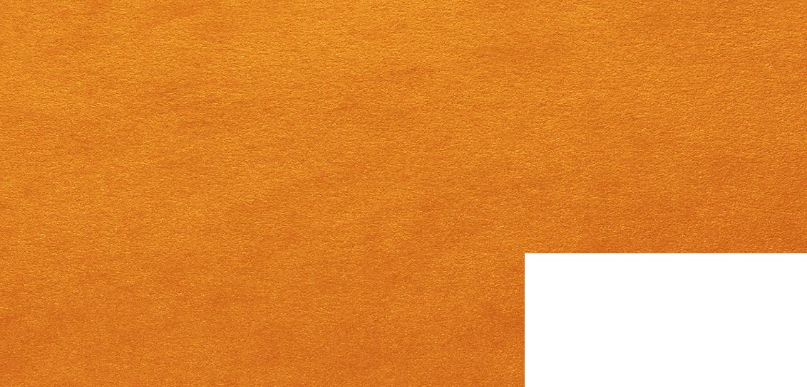 toddytapper web